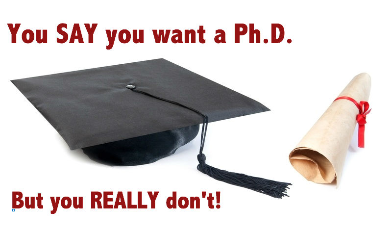 do i really want a phd